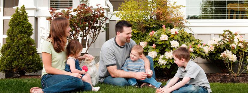 Family playing with a cat in their front yard